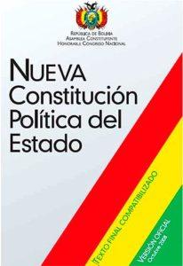 FIg. 4 - La nuova costituzione boliviana